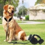 רק 8.56$ לרצועה נגללת מושלמת לכלב שלכם כולל פנס וגליל 20 שקיות איסוף מביתGocomma!!
