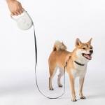 רק 12.99$ עם הקופון BGGGXJP לרצועת הכלבים הטלסקופית הנהדרת מבית שיאומי!!